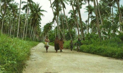 Zdjęcie PAPUA NOWA GWINEA / Wschodnia PNG / Bogia-Boroi / Droga