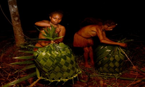 PAPUA NOWA GWINEA / Papua Zachodnia / dwa dni marszu od wioski Mabul, las deszczowy / Korowajki przy