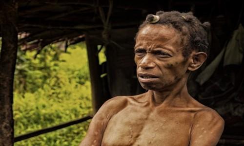 Zdjęcie PAPUA NOWA GWINEA / Papua Zachodnia / dwa dni marszu od wioski Mabul, las deszczowy / Korowajka - ciągle ta sama ;)