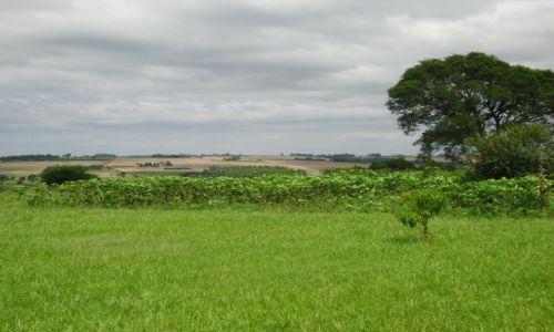 PARAGWAJ / Itapua / Jesus de Tavarangue / Paragwajski krajobraz