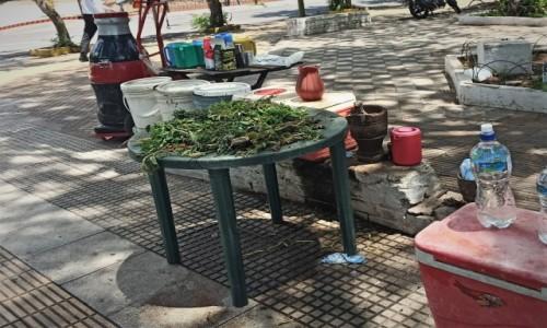 PARAGWAJ / Asuncion / Asuncion / Uliczny stragan z yerba i terere