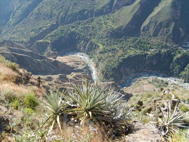 Zdj�cia: Cabanaconde, widok og�lny na Kanion Colca (okolice Cabanaconde), PERU