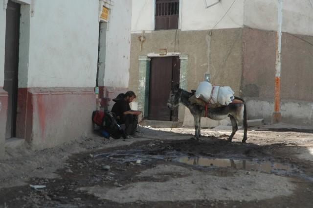 Zdjęcia: Cotahuasi, Arequipa, Zapoznanie z Paksem, PERU