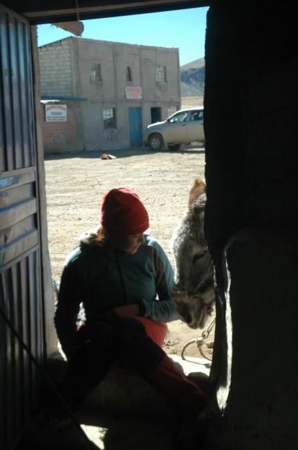 Zdjęcia: Culipampa, Arequipa, Culipampa (zdjęcie do art), PERU