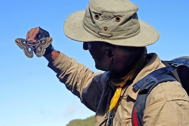 Zdjęcia: Choquequirao, Cusco, Autor trzymający ćmę  Cecropie, PERU