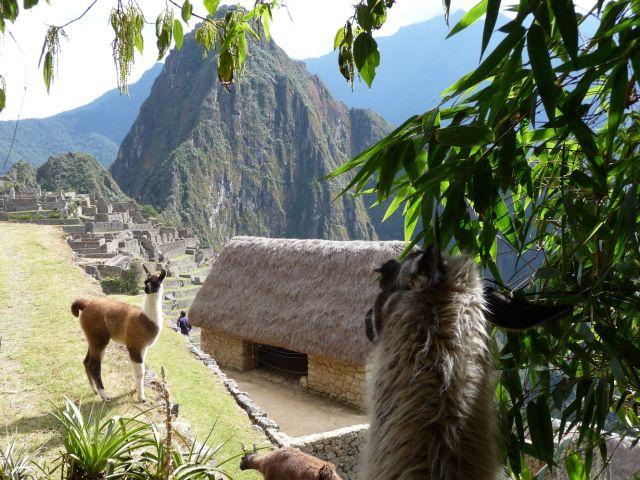 Zdjęcia: Machu Picchu, Machu Picchu inaczej, PERU
