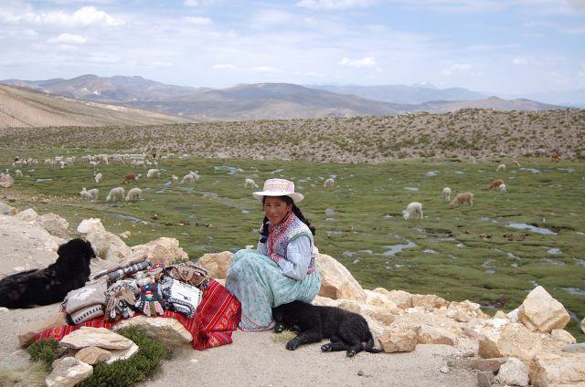Zdjęcia: w drodze do Colca, w drodze do Colca, Przydrożna sprzedawczyni, PERU