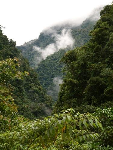 Zdjęcia: Okolice Pozuzo, Huampal, Andy, Kordyliera Wschodnia, Dolina Rio Huancabamba, PERU