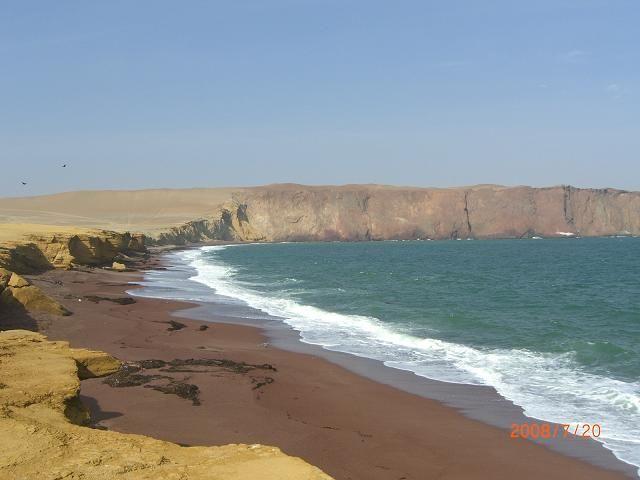 Zdjęcia: Rezerwat w okolicach Paracas, Paracas, Peru, PERU