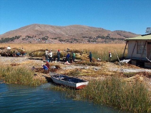 Zdjęcia: Jezioro Titicaca, Altiplano, Budowa łodzi z trzciny totora, PERU
