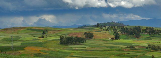Zdjęcia: W drodze do Boliwi, Peru, PERU