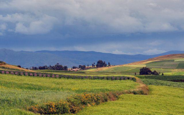 Zdjęcia: W drodze do Boliwi, Peru 2, PERU