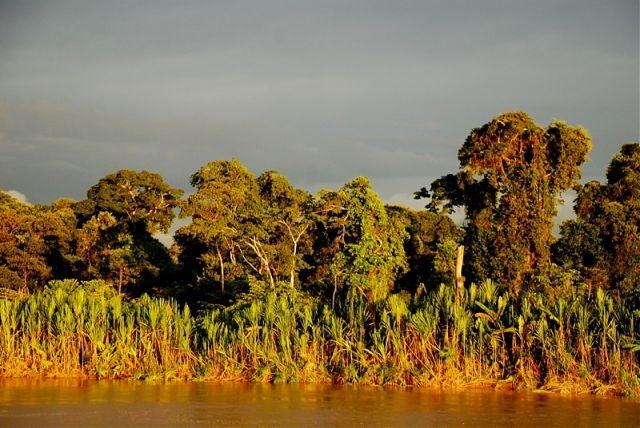 Zdjęcia: Amazonka, polnocne Peru, ciezkie, deszczowe chmury nad dzungla, PERU
