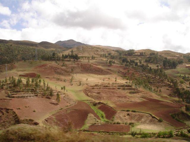 Zdj�cia: Gdzies po drodze z Cusco w kierunku Quillabamba, Kolorowe pola uprawne, PERU