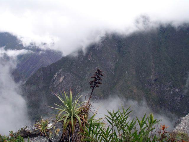 Zdj�cia: Machu Picchiu, Widok na gory z drogi na Machu Picchu, PERU