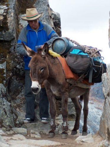 Zdj�cia: Prze��cz Punta Union, Cordillera Blanca, Przewodnik Marco, PERU