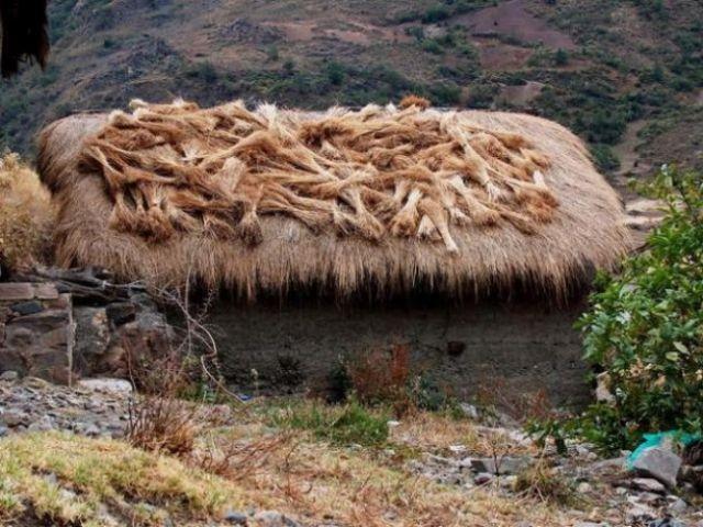 Zdjęcia: Dolina Vaqueria, Cordillera Blanca, Snopki zboża, PERU