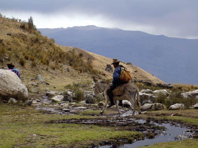 Zdjęcia: Okolice wioski Pitec, Okolice Huaraz, Cordillera Blanca, W okolicach wioski Pitec, PERU