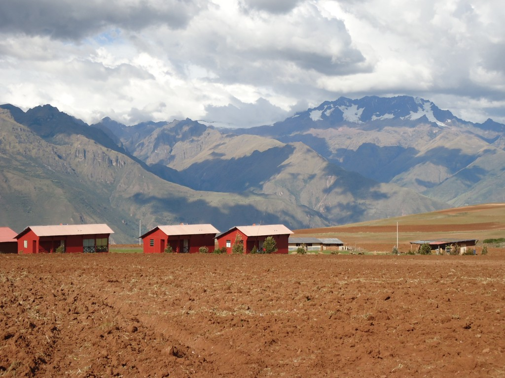 Zdjęcia: Moray, Cuzco, Peruwiańskie Altiplano, PERU