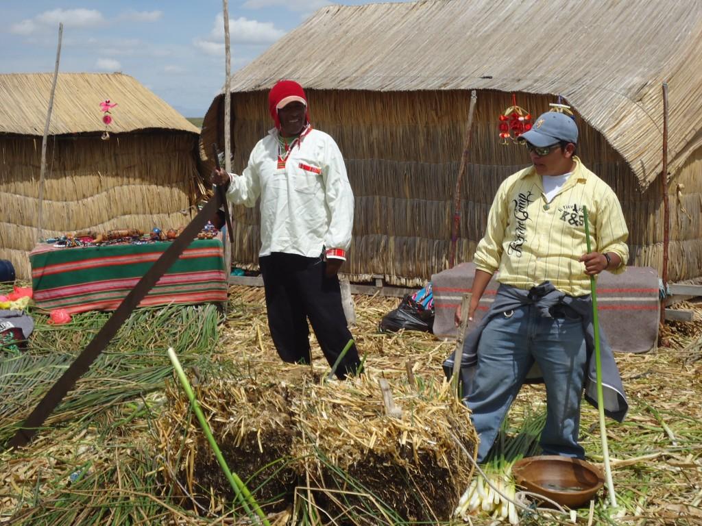 Zdjęcia: Wyspy Uros, Puno, Przygotowanie trzciny, PERU