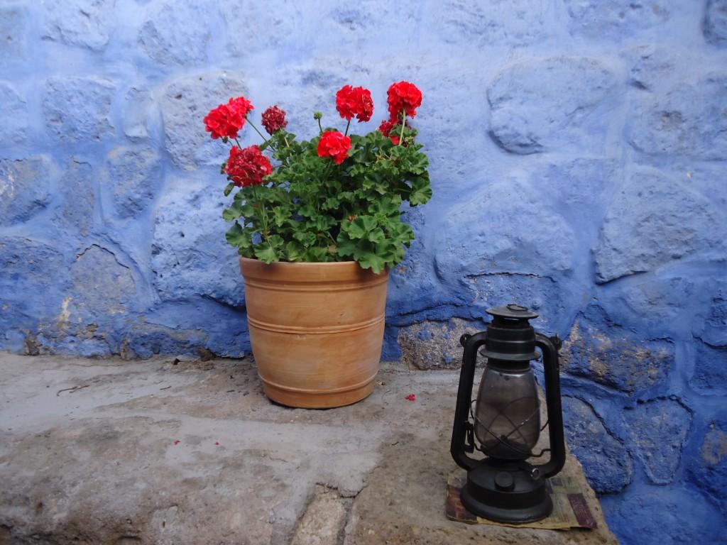 Zdjęcia: Arequipa, Arequipa, Santa Catalina (1), PERU