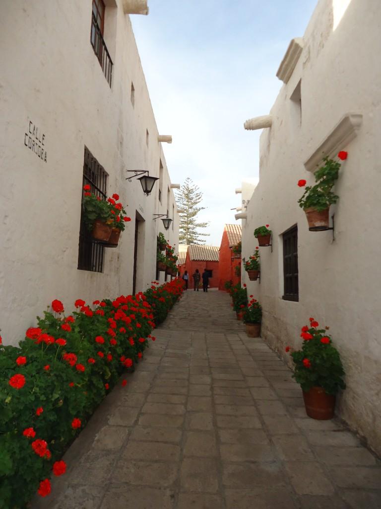 Zdjęcia: Arequipa, Arequipa, Santa Catalina (3), PERU