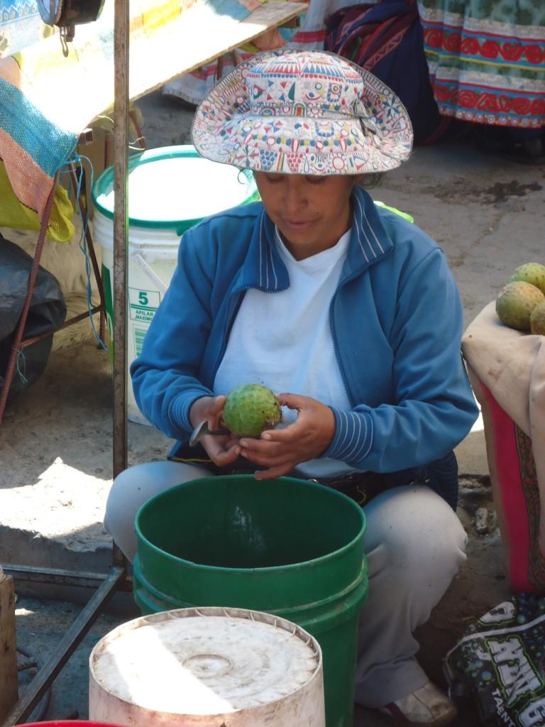 Zdjęcia: Chivay, Arequipa, Jadalne opuncje ...., PERU