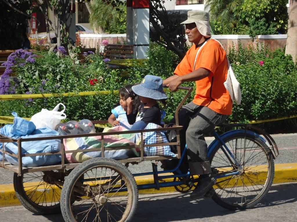 Zdjęcia: Corire, Arequipa, Jak wozić dzieci ?, PERU