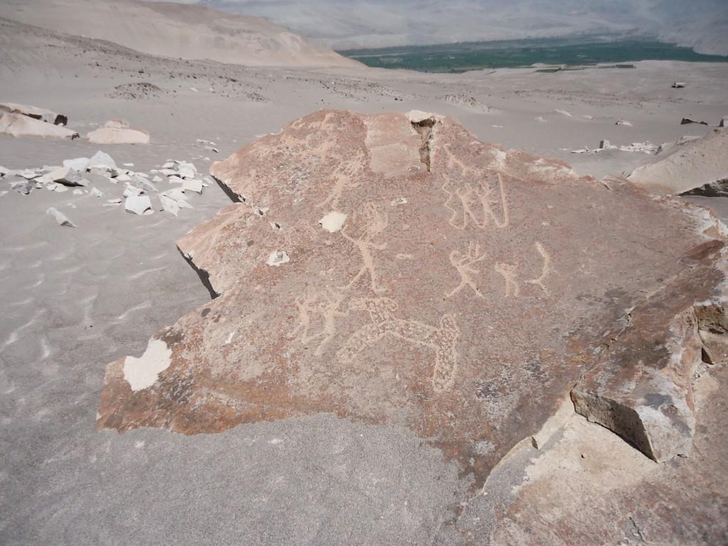 Zdjęcia: okolice Corire, Arequipa, Toro Muerto - petroglify, PERU