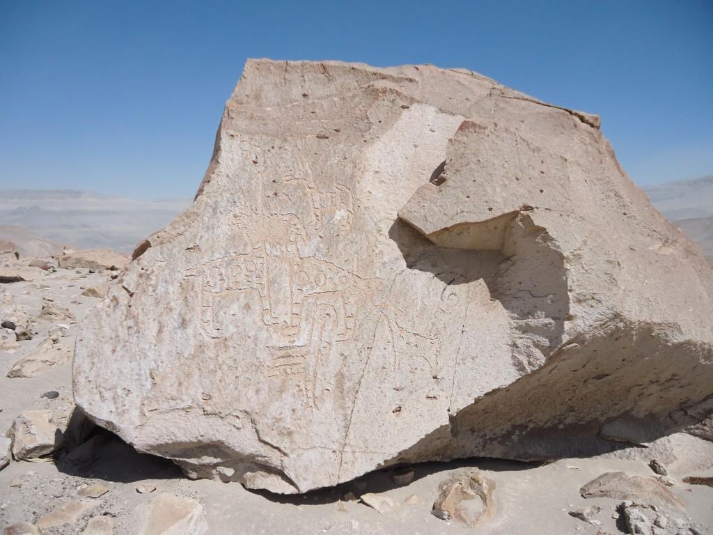 Zdjęcia: okolice Corire, Arequipa, Toro Muerto - petroglify (2), PERU