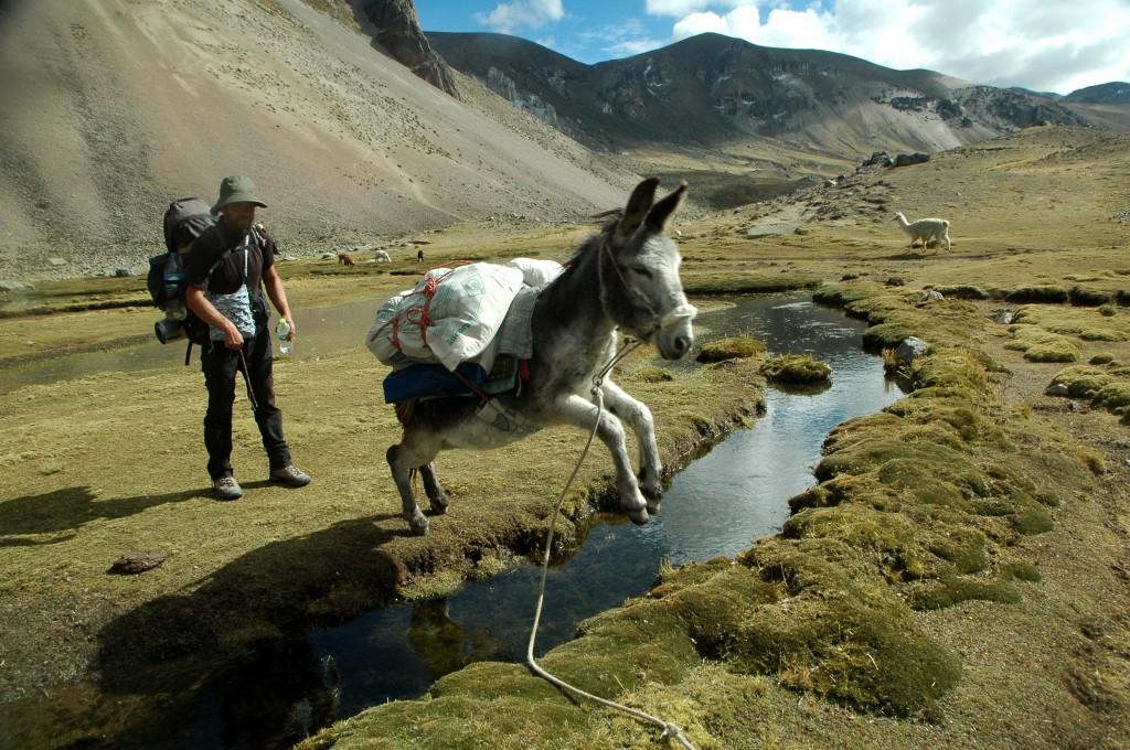 Zdjęcia: Peruwiańskie Andy, Arequipa, Paks! (zdjęcie do art.), PERU