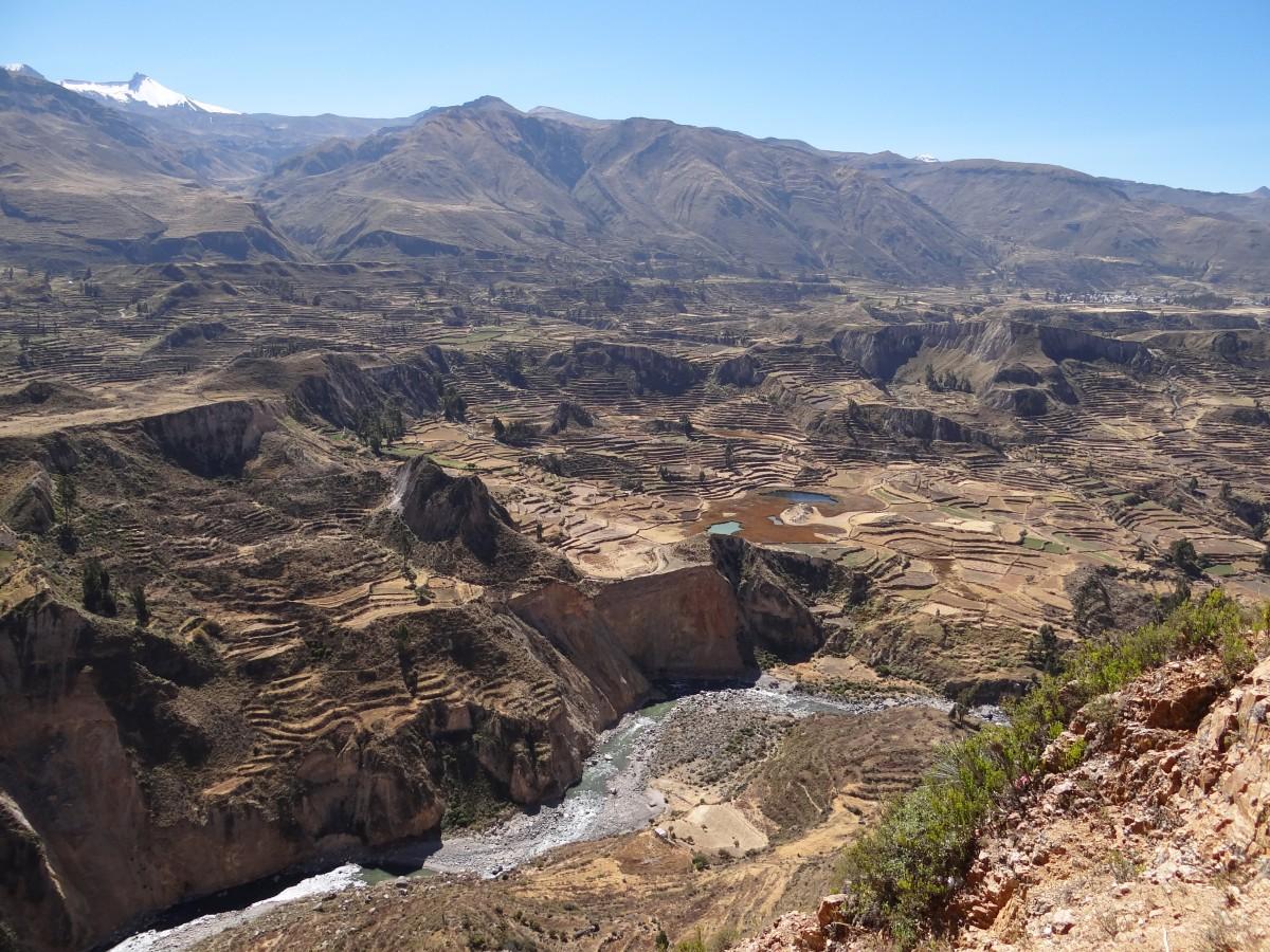 Zdjęcia: W drodze do Kanionu Colca, Arequipa, Na peruwiańskiej roli - Tarasy uprawne, PERU