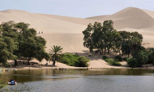 Zdjęcie PERU / Peru / Oaza Huacca China / Oaza