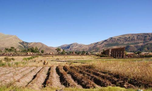 Zdjęcie PERU / Peru / Peru / Peruwiańske pola