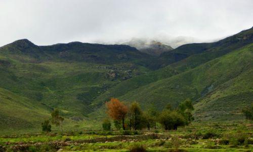 Zdjęcie PERU / AREQVIPA / AREQVIPA / kĘPKA