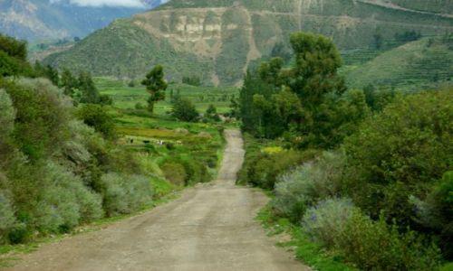 Zdjęcie PERU / Kanion  Kolca / Kanion  Kolca / Droga