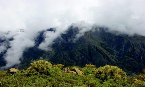 Zdjęcie PERU / Kanion Kolca / Kanion Kolca / Poranek
