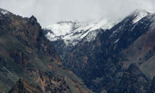 Zdjęcie PERU / Kanion Kolca / Kanion Kolca / Kondor