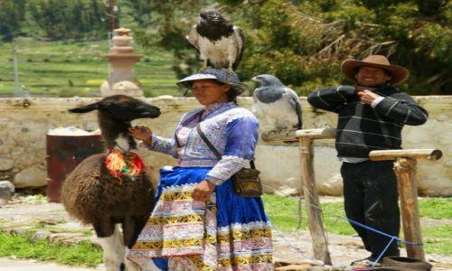Zdjęcie PERU / Chivay / Chivay / Foto biznes