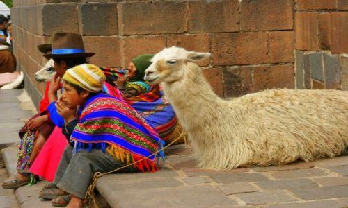 Zdjęcie PERU / Cuzco / Cuzco / No  to  czekaja