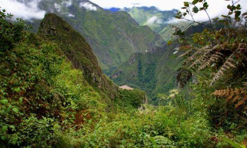 Zdjecie PERU / Machu Picchu / Machu Picchu / Machu Picchu