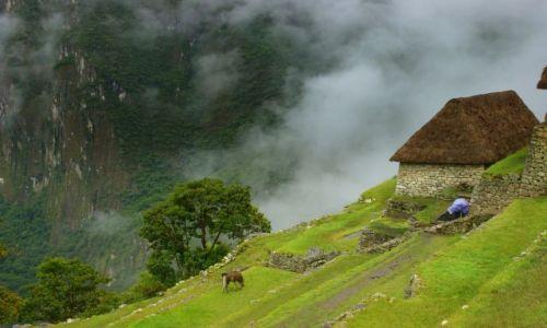 PERU / Machu Picchu / Machu Picchu / Machu Picchu