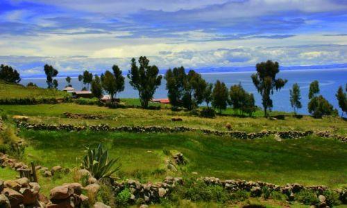 Zdjecie PERU / Titikaka / Titikaka / Wyspa  Tequile