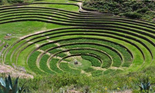 Zdjecie PERU / tuż pod Andami / okolice Cusco / pola uprawne