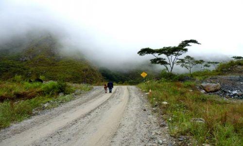 Zdjecie PERU / Trekking na Machu Picchu / ... / Droga