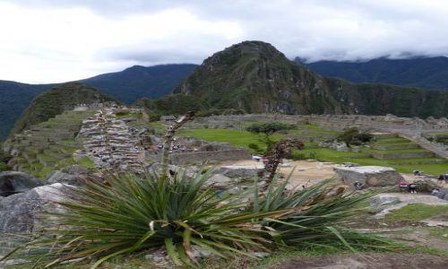 Zdjecie PERU / Peru / ... / Machu Picchu