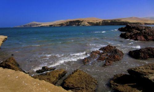 Zdjecie PERU / Wybrzeze Peruwianskie / Reserva de Paracas /  Paracas