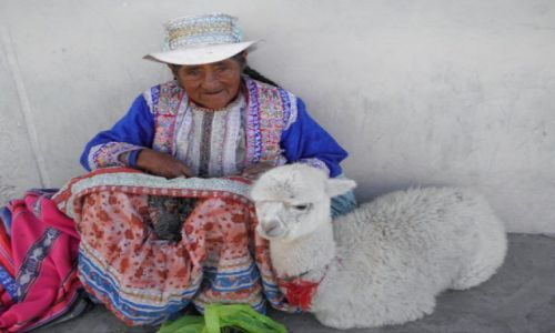 Zdjecie PERU / - / Chivay / Konkurs Wytchnienie czy praca?