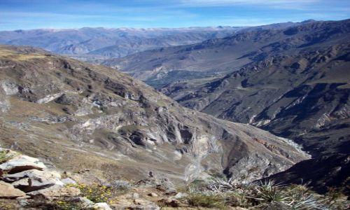 Zdjecie PERU / Andy / Kanion Colca / Andy