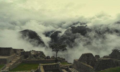 Zdjecie PERU / Cusco / Machu Picchu / mp